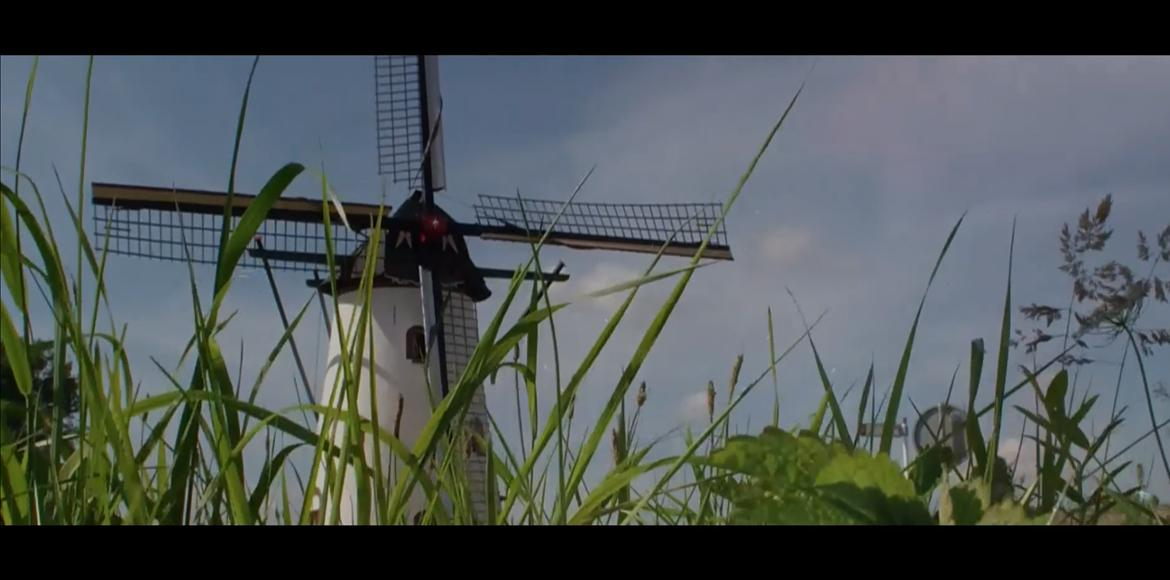 Witte Molen Movie